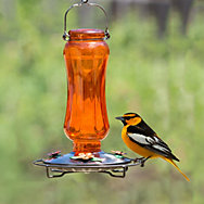 Carnival Glass Vintage Oriole Feeder lifestyle
