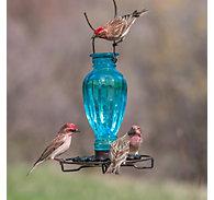 Daisy Vase Vintage Bird Waterer Lifestyle
