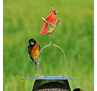 Perky-Pet® Decorative Cardinal Hanging Hook