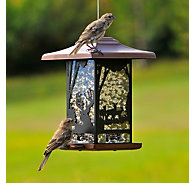 Perky-Pet® Wilderness Lantern Wild Bird Feeder