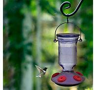 Perky-Pet® Lavender Field Top-Fill Glass Hummingbird Feeder