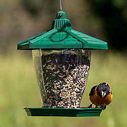 Perky-Pet® The Chalet Wild Bird Feeder