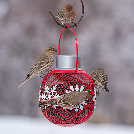 NO/NO® Red Solar Seed Ball Bird Feeder