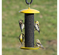 Perky-Pet® Shorty Finch Feeder