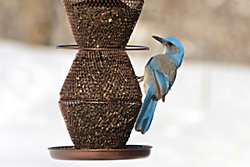 NO/NO® 5 Tier Bronze Wild Bird Feeder