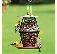 NO/NO® Sunflower Lantern Wild Bird Feeder