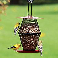 NO/NO® Sunflower Lantern Wild Bird Feeder