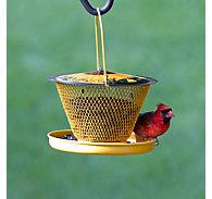 No/No® Designer Single with Tray Wild Bird Feeder