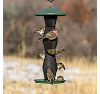 Perky-Pet® Green & Black Finch Tube Wild Bird Feeder