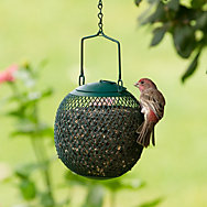 Perky-Pet® Green Seed Ball Wild Bird Feeder - 1 lb Seed Capacity