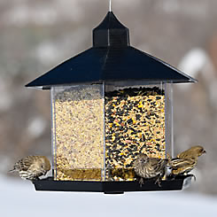 Perky-Pet® Triple Treat Bird Feeder