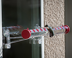 Perky-Pet® 