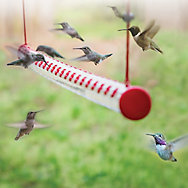 Perky-Pet® 4 ft Hummerbar® Hummingbird Feeder
