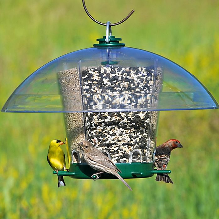 wild feeders finch ecoclean bird unlimited feeder wbu medium birds products birdfeeder