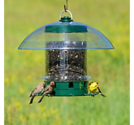 K-Feeders Super Carousel Wild Bird Feeder - 8 lb Seed Capacity