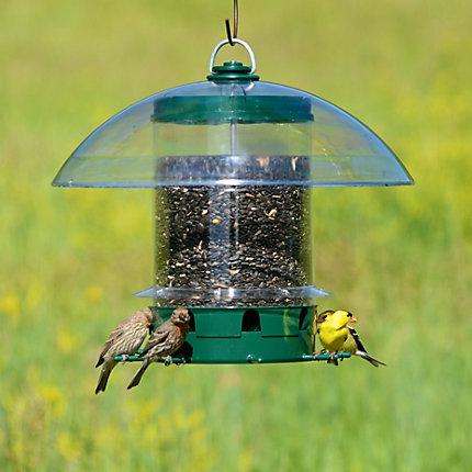 pet en seed walmart perky canada bird ip feeder multi wild