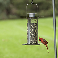 Perky-Pet® Solar Lantern Feeder