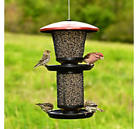 Perky-Pet® Multi-Seed Wild Bird Feeder - 4 lb Seed Capacity
