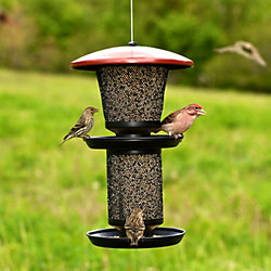 Perky-Pet® Multi-Seed Wild Bird Feeder