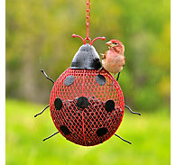 Perky-Pet® Ladybug Mesh Wild Bird Feeder - .6 lb Seed Capacity