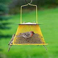 NO/NO® Sunflower Basket Wild Bird Feeder