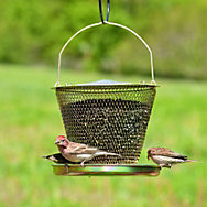 NO/NO® Tray Brass Wild Bird Feeder