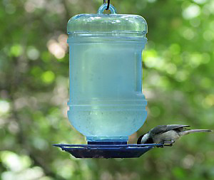 Bird waterers help attract birds to your yard.
