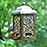 Painted Bunting Feeder
