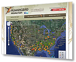 View the Hummingbird Migration Map