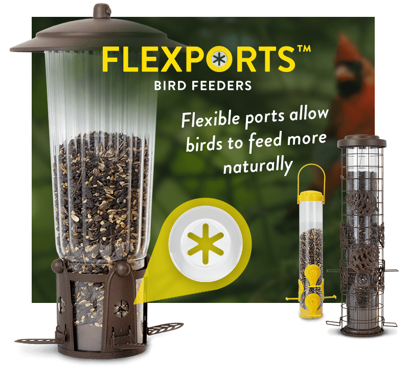 Perky-Pet Flexport Feeders